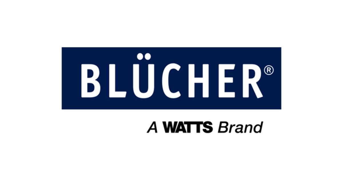 Blüher logo